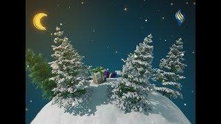 قناة سما الفضائية || سهرة رأس السنة 31-12-2018