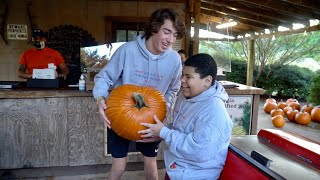 We Bought the World's Biggest Pumpkin!