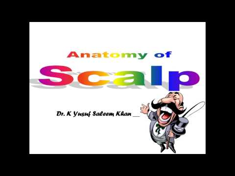 Lecture on Anatomy of Scalp ........... by Dr. Yusuf