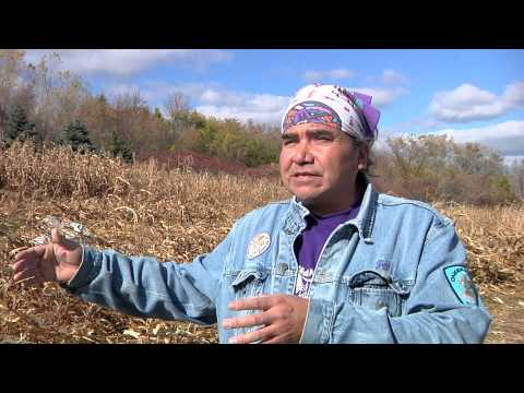 Traditional Agricultural Practices Of The Oneida Nation