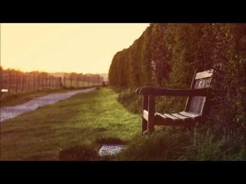 Bee Hunter - Flight To Dublin (Original Mix)