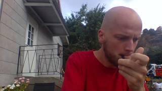 The silent revolution - Smoking Mugwort/Gråbo/Artemisia vulgaris