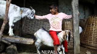 Nepalis with Werewolf Syndrome