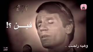 حليم | شوف بقينا فين يا قلبي - حالات واتس آب