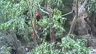 Sauvetage à Sillans la Cascade (3)