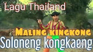 Download Lagu Thailand MALING KING KONG SOLONENG KONGKENG (Oficial video clip )