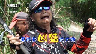 沈文程 旅遊釣魚實境秀-五里埔懷舊釣魚趣(下)