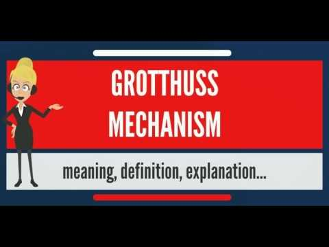 What is GROTTHUSS MECHANISM? What does GROTTHUSS MECHANISM mean? GROTTHUSS MECHANISM meaning