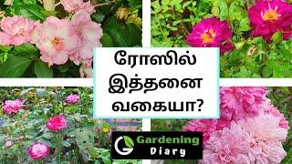 Gardening ...