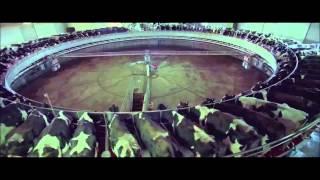 Audio88 & Yassin feat. Bleubird & Soda   Rettet die Wale unso (Mashup)