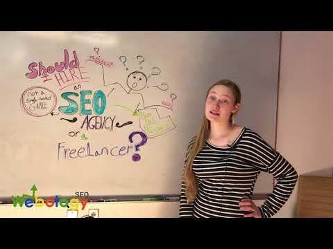Should I Hire an SEO agency or a Freelancer? - Webology SEO