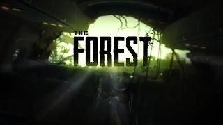 Оптимизация игры The Forest (0.55c и Выше)!!!!
