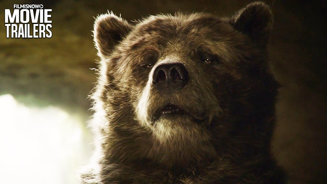 Baloo from jungle book
