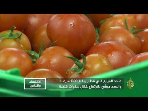 الاقتصاد والناس-قطر.. خطط طموحة لتحقيق الاكتفاء الزراعي  - 19:21-2017 / 7 / 15