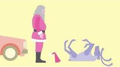 Porokello - The Reindeer bell: Reindeer app made in Finland