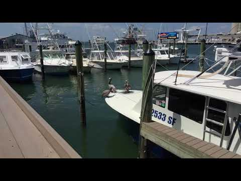 Waterfront Restaurant Grills Seafood Deck Near Cocoa Beach Florida