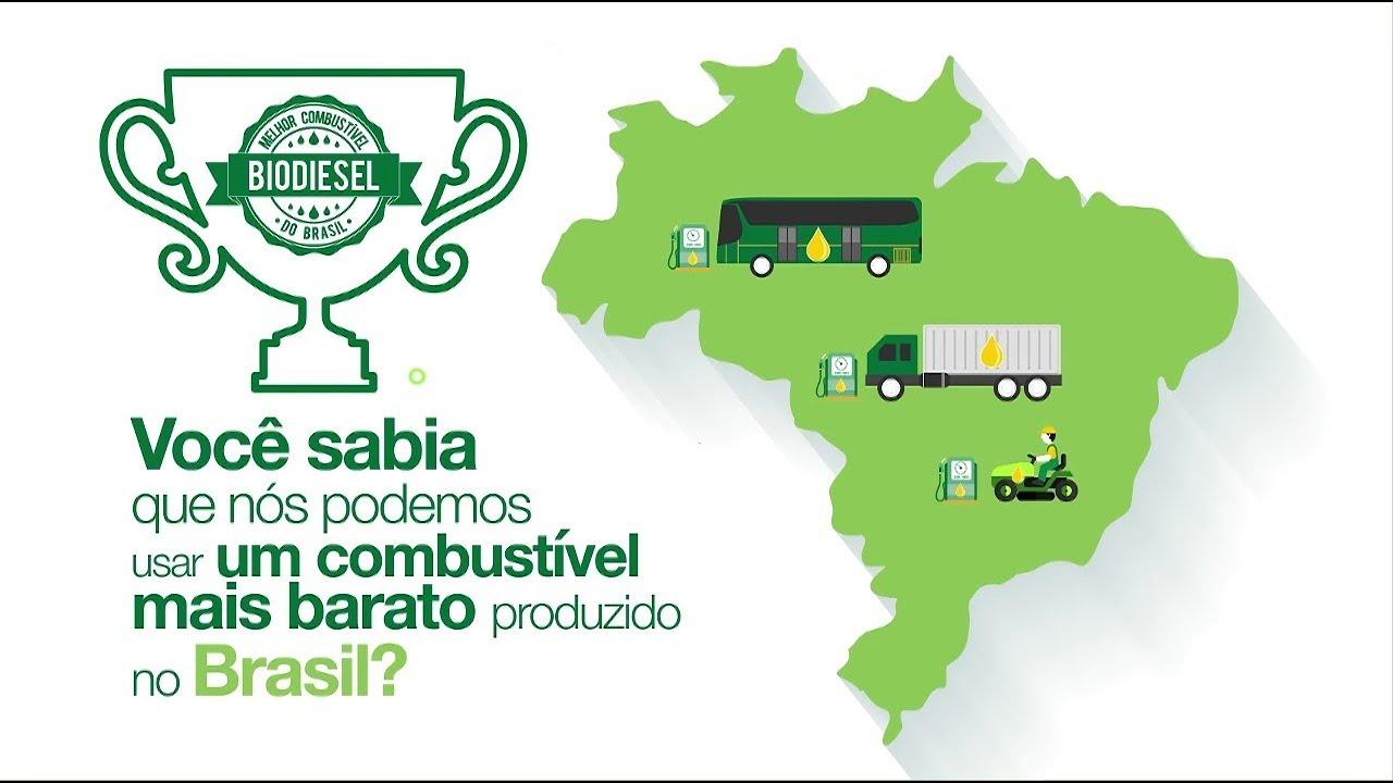 Resultado de imagem para bbf brasil biofuels
