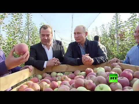 بوتين يحضر هدية