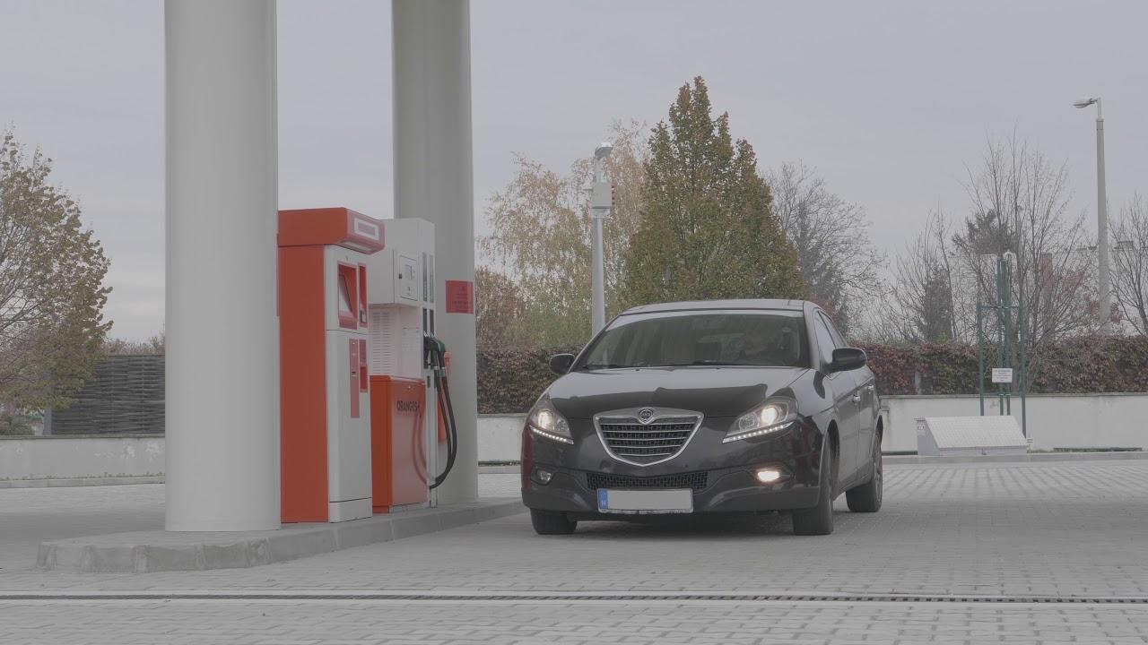A benzinkút üzemeltetőjének látási követelményei, Látás újszülöttben