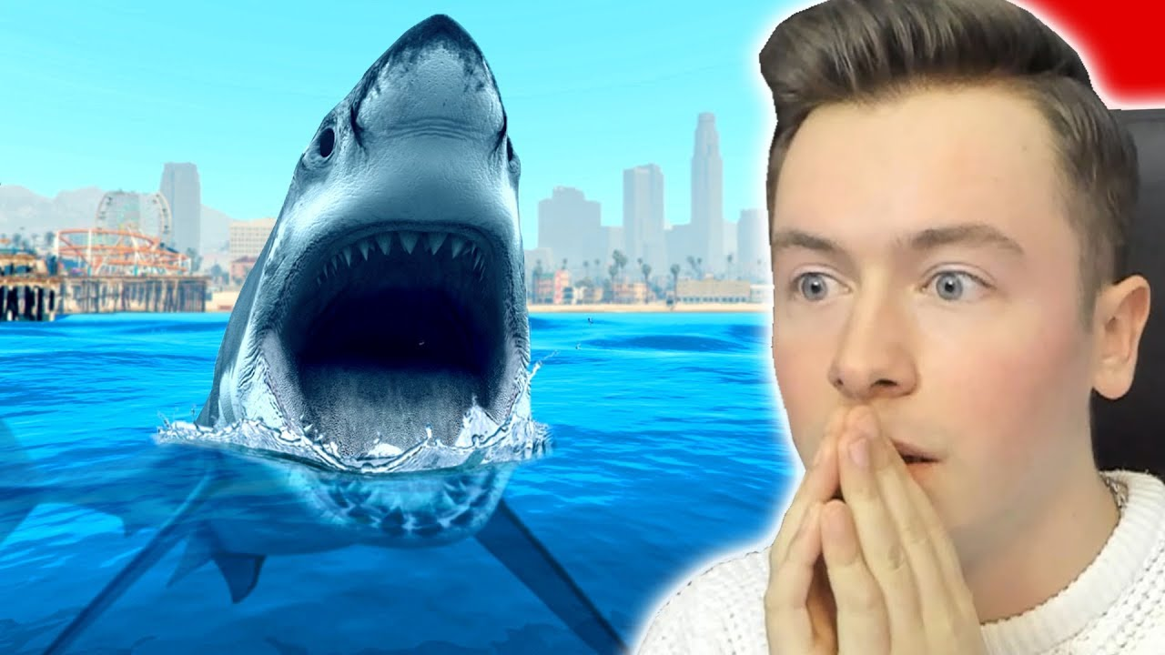 Gta 5 Hai Finden