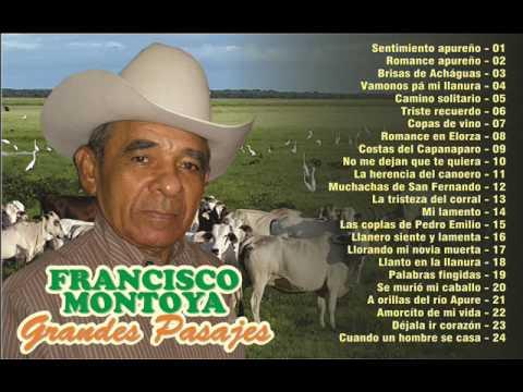 FRANCISCO MONTOYA  GRANDES PASAJES