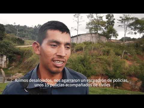 Roberto Gomez, Honduras | Global Witness