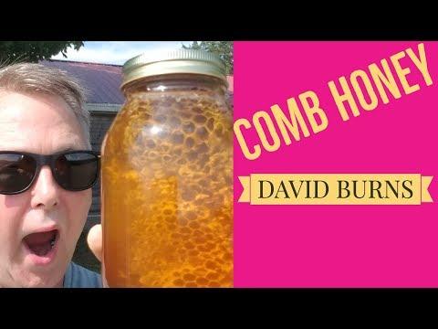 Beekeeping - Jar Of Honey Comb