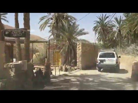 👉 La belle oasis de🌴 MIDES-TOZEUR 🌴 TUNISIA 👍