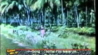 MGR Songs-Thottal Poomalarum-Padakotti-.flv