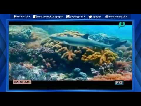 [Good Morning Boss] AseanTV: Asean Center for Biodiversity [06|17|16]