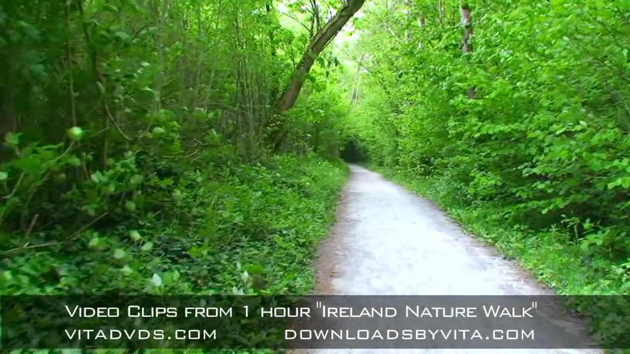 Ireland Nature Walk Video - YouTube