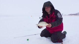 Рыбалка на самом большом озере в ЗАПАДНОЙ СИБИРИ День 3