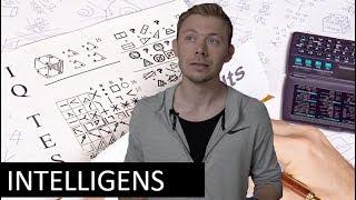 IQ-Test og Intelligens: Hvem Er Verdens Klogeste?