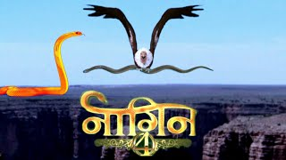Naagin 4 episode 10