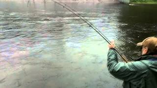 "Salmon Fishing Ireland 2014 ( HD )."" MAY""."