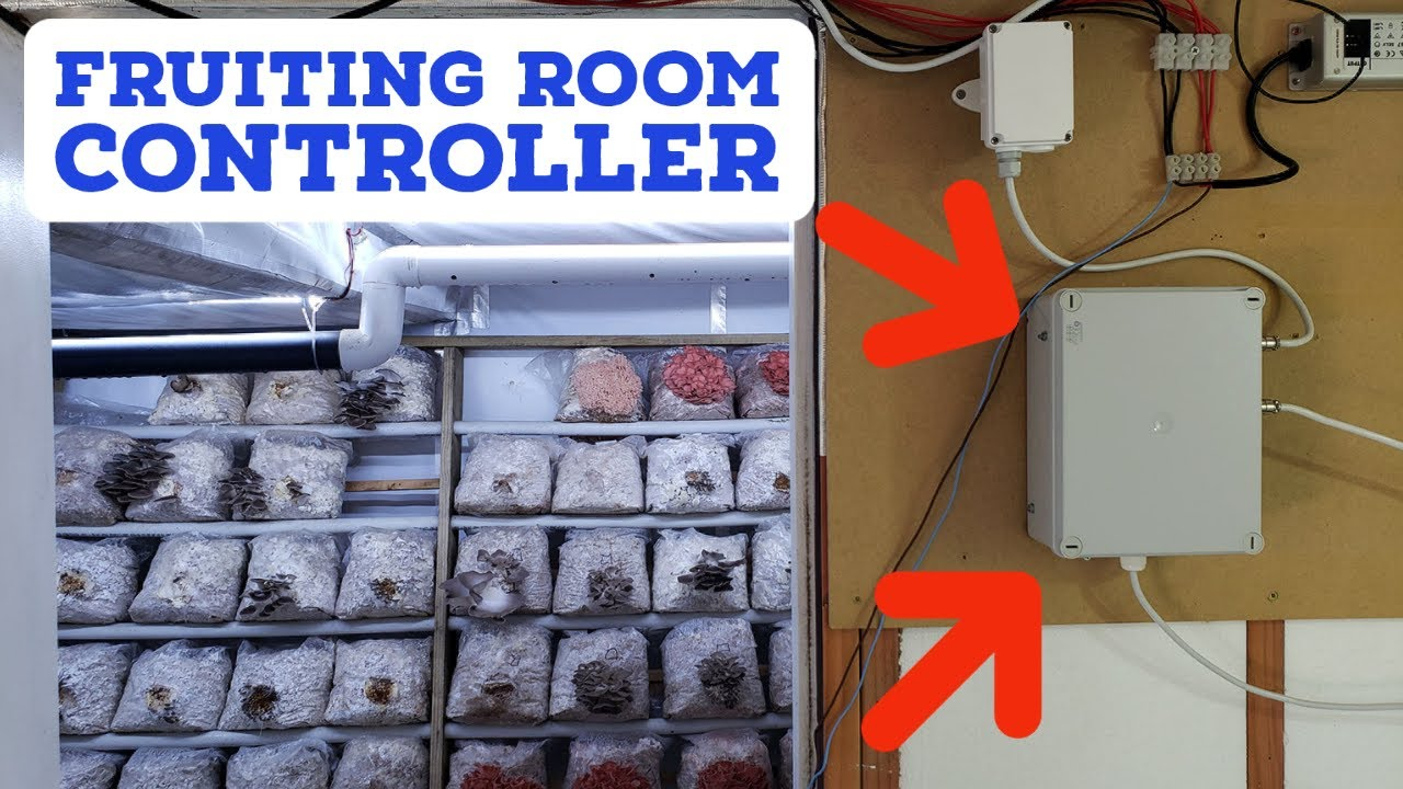 DIY Mushroom Fruiting Room Controller