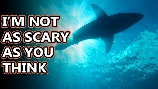 Great White Shark facts: do you even know why they're called that? | Animal Fact Files