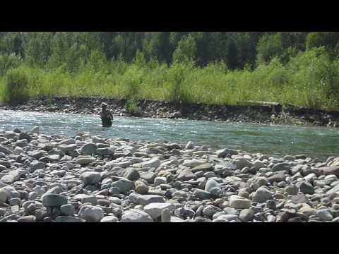Bull Trout Fly Fishing, Western Canada