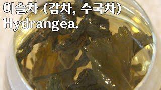 이슬차 (감로차, 수국차) 水菊  Hydrangea