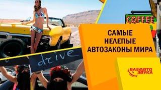 Самые нелепые автозаконы мира. Обзор Avtozvuk.ua