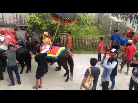 Kuda Menari (Sayyang Pattu'du') Tradisi Adat Mandar