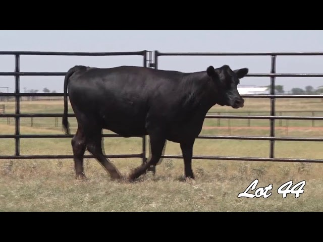 Pollard Farms Lot 44