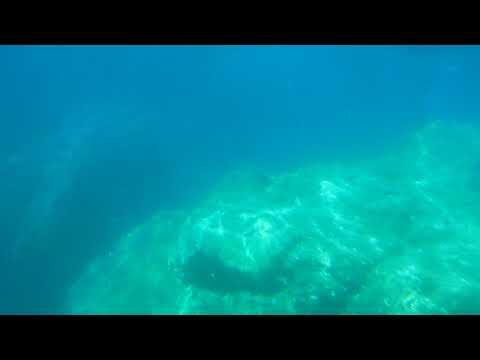 Veduta Sottomarina all'Elba