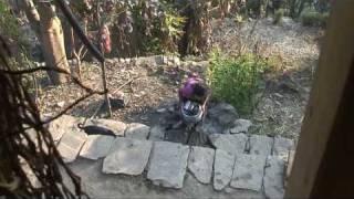 Living in Nepal