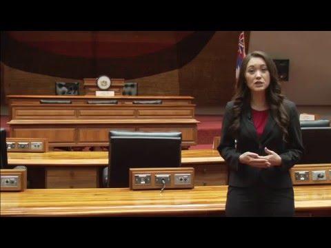 2013 Hawaii House Republican Biennium Budget Review
