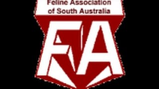 FASA Annual Show 2015 Day 2 Video 3