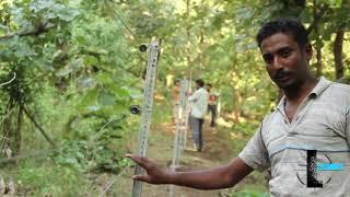 Solar Fencing Agriculture (Suraj Rajan)