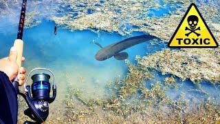 Fishing TOXIC BLUE LAKE For Big Fish! *HAZARD*