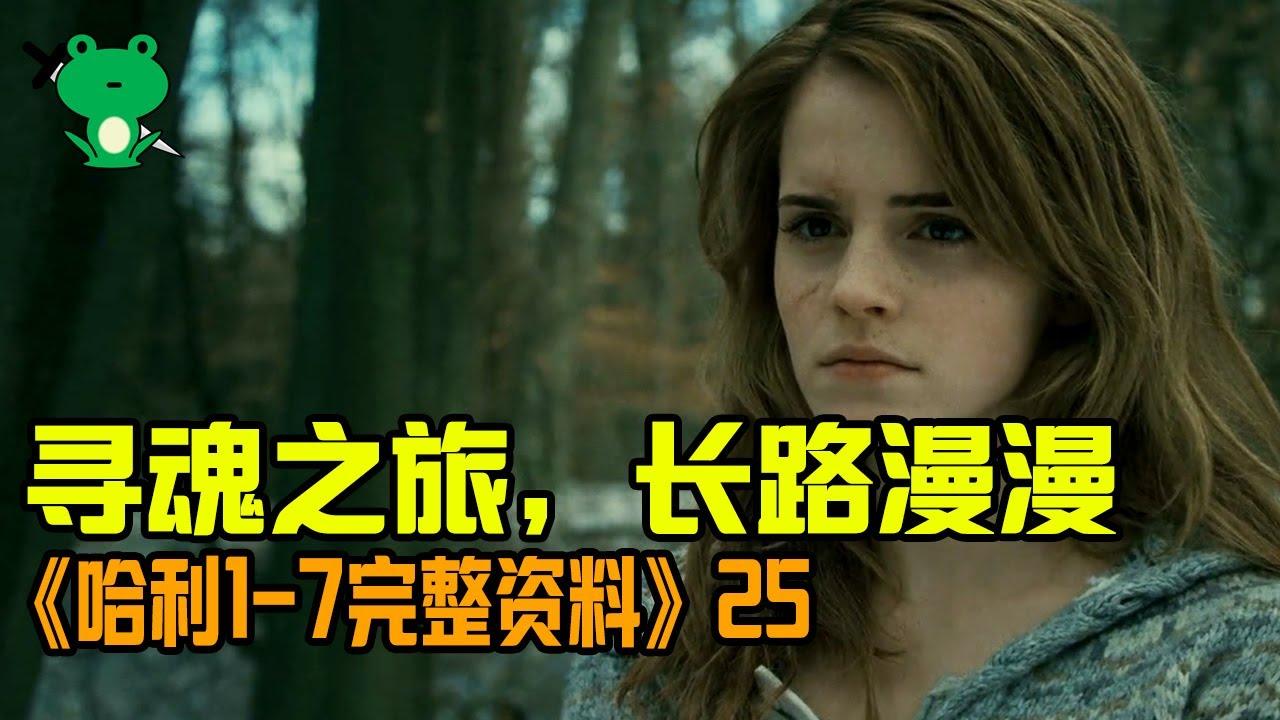 【細品哈利25】《死亡聖器》專題 | 毫無線索,隊友拋棄,前途未卜