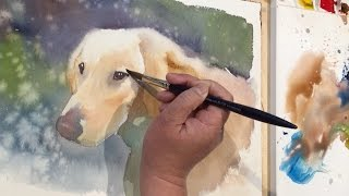 Watercolor painting of a dog named Rosie